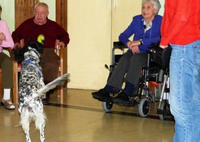 Pet Therapy RSA